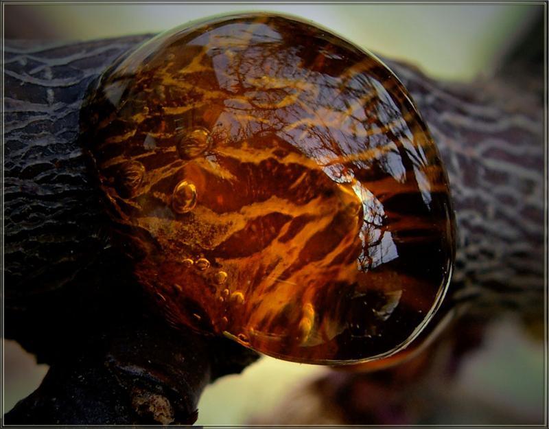 фото добыча янтаря