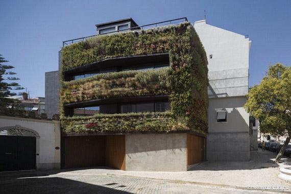 Дом с вертикальным садом