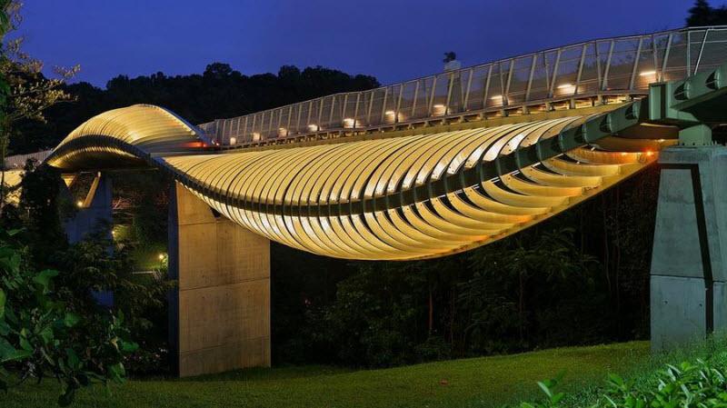 Самый волнистый мост в мире